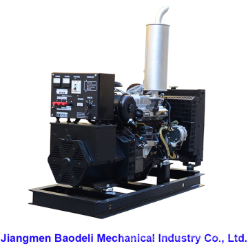 Preis Diesel Generator 20kVA (BIS20D)