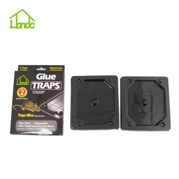 Mouse Glue Trap Boards Amazon UK