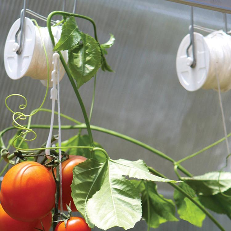 Plant Roller Hook Support
