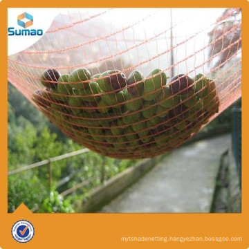 Pe netting for olive tree from Changzhou