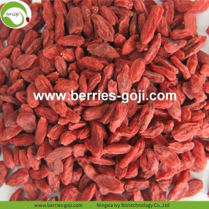 New Factory Supply Torkad Malaysia Wolfberry