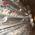 Máquina de alimentação automática para casa de frango