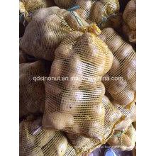 2015 Kartoffel in Mesh Bag