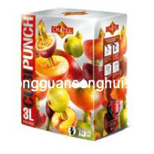 Saftbeutel im Kasten / Latzbeutel für Saftverpackung