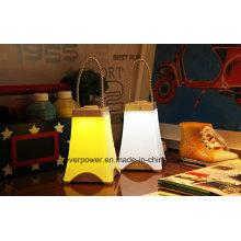 USB recarregável de poupança de energia decorativos LED de emergência Lanterna Night Light (NT150828)