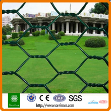 Farm chicken hexagonal wire mesh