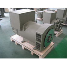 CE, ISO Approved Brushless Synchronous AC Alternator 10kw (JDG164C)