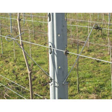 Galvanized vineyard metal trellis post