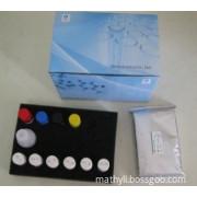 Human CK 18-M65 ELISA Kit