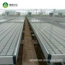Greenhouse medicine valve sump hydroponic trays flood system