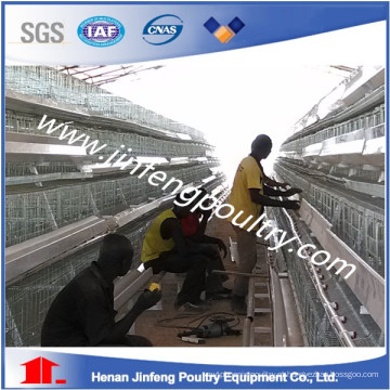 um tipo de gaiola do equipamento da exploração avícola da galinha que coloca a gaiola