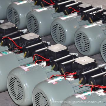 Conversor monofásico 0.37-3kw que comienza y que funciona con el motor de CA de inducción para el uso de la máquina agrícola de la transformación, fabricante del motor de la CA, promoción del motor