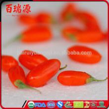 Zero pesticide goji berries dried goji berry dried goji give you healthy
