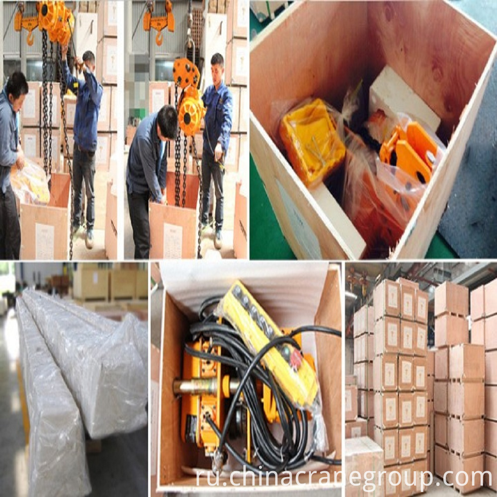 LT-Electric Chain Hoist with Trolley Packing