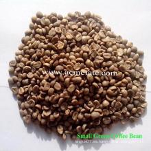 Grano de café verde de Yunnan Aribica sin procesar