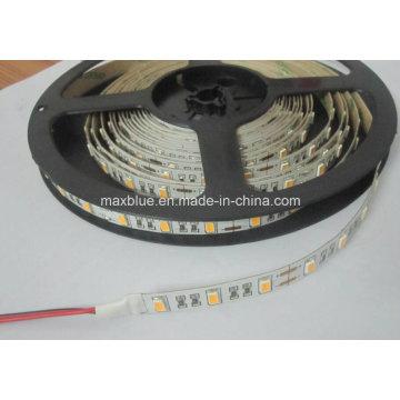 DC12V 60LEDs / M Samsung 5630 Luz de tira de LED