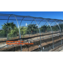 Pe Film For Greenhouses, Construction Film, PP Leno Bags, Anti Insect Net 25 Mesh, Anti Bird Net