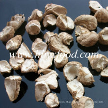 Bulk Cultivado Shiitake Mushroom Perna Seca da China