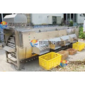 High Efficiency Automatic Apple Avocado Onion Sorting Grading Machine