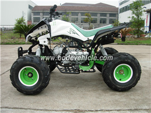 CE-approvaled loncin 110 cc dune buggy street på legal