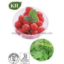 Raspberry Ketone Glucoside CAS: 38963-94-9