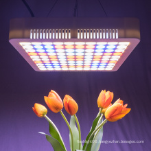 hydroponic full spectrum led grow light 300w