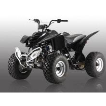 110CC ATV-8