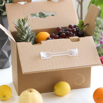 Black Print Fruit Packaging Box with Plastic Handle