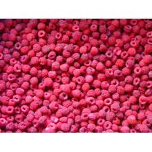IQF Замороженные органические малины Hr-16090909
