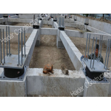 Systèmes d'isolement sismique Conception de l'autoroute et du pont