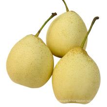 Nouvelle Crop Fresh Ya Pear