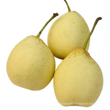 New Crop Fresh Ya Pear