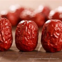 Best quality red jujube fruit dates wholesale export
