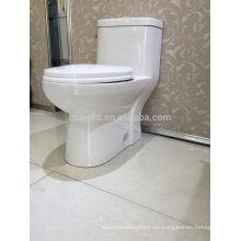 CB-9520 CUPC de cerámica de doble descarga aseo de limpieza self EE. UU. Armario de agua