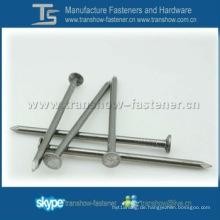 Gemeinsame Eisen Nägel mit Brand Topcreation in Ningbo China