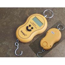 Échelle électronique portable