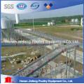 Projeto automático de gaiola de frango para camadas na China