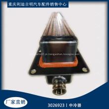 NTA855 núcleo do intercooler de lubrificação do motor 3026923 3020941