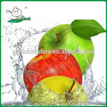 Gala vert / Pomme verte d'origine / Nouvelle plante Pomme verte