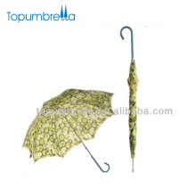 "23"" 8k food fruit umbrella food cover umbrella"