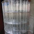 Malla de alambre soldada galvanizada sumergida caliente caliente de la jaula del conejo