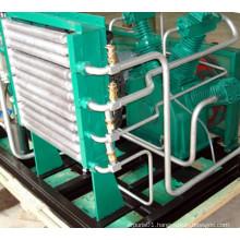 CNG Compressor LPG Compressor LNG Compressor Nitrogen Compressor (Dw-1.75/2-200)