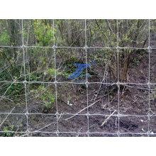 Поле, забор, скот ячеистой сети (фабрика)