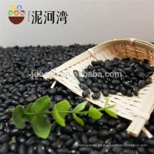 Precio de alta calidad negro pequeño de los frijoles de riñón