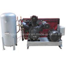 Compresor de aire soplado de la botella del animal doméstico 11kw