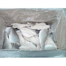 frozen seabass fillet supply