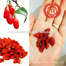 Ningxia Goji Berry Miracle Fruit Ningxia Berries Goji Dried