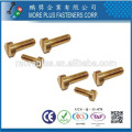 Made in Taiwan Stainless Steel Carbon Steel Brass Class4.8 Computer Machine Screw