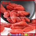 Market price of Goji Berries bulk plants