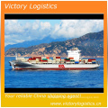 Freight Forwarder Agent/Shipping Logistics/Shipping Agent in China